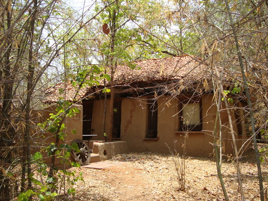 Mahua Kothi Bandhavgarh Nationalpark